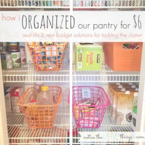 how i organized our pantry for $6