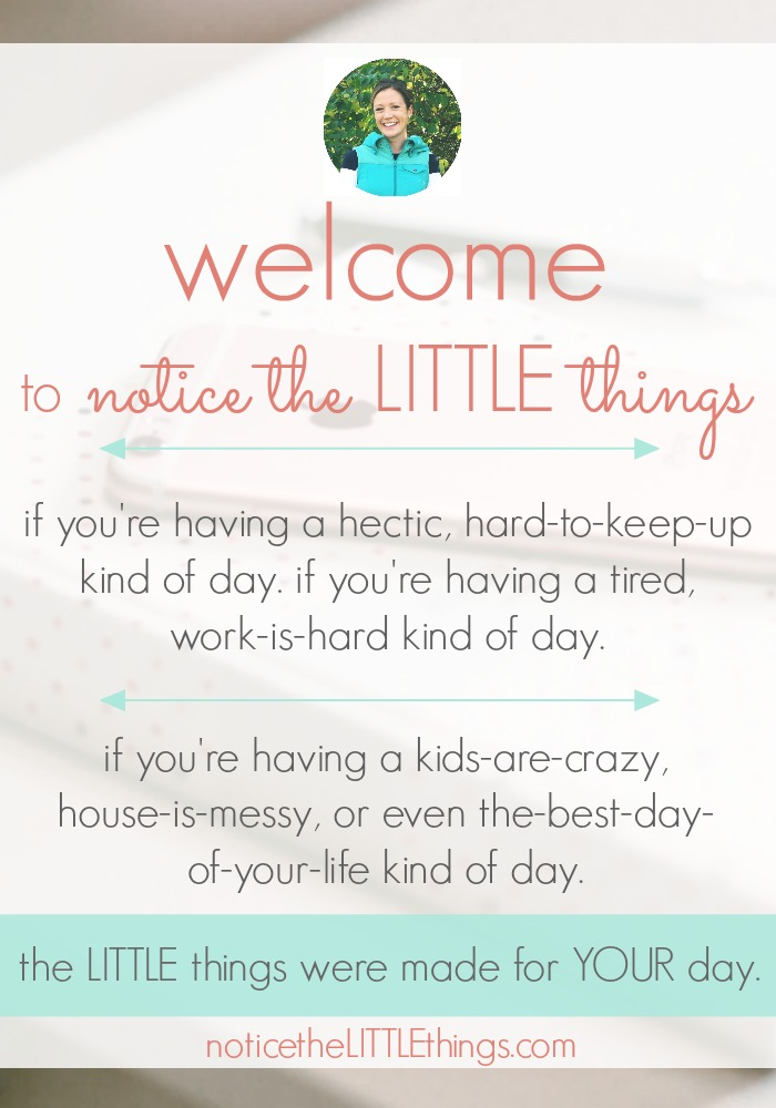 notice the LITTLE things daily gratitude habit