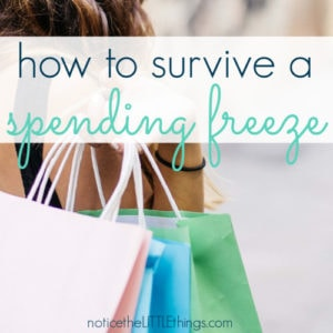 shopping bags for a spending freeze