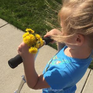 dandelion bouquet