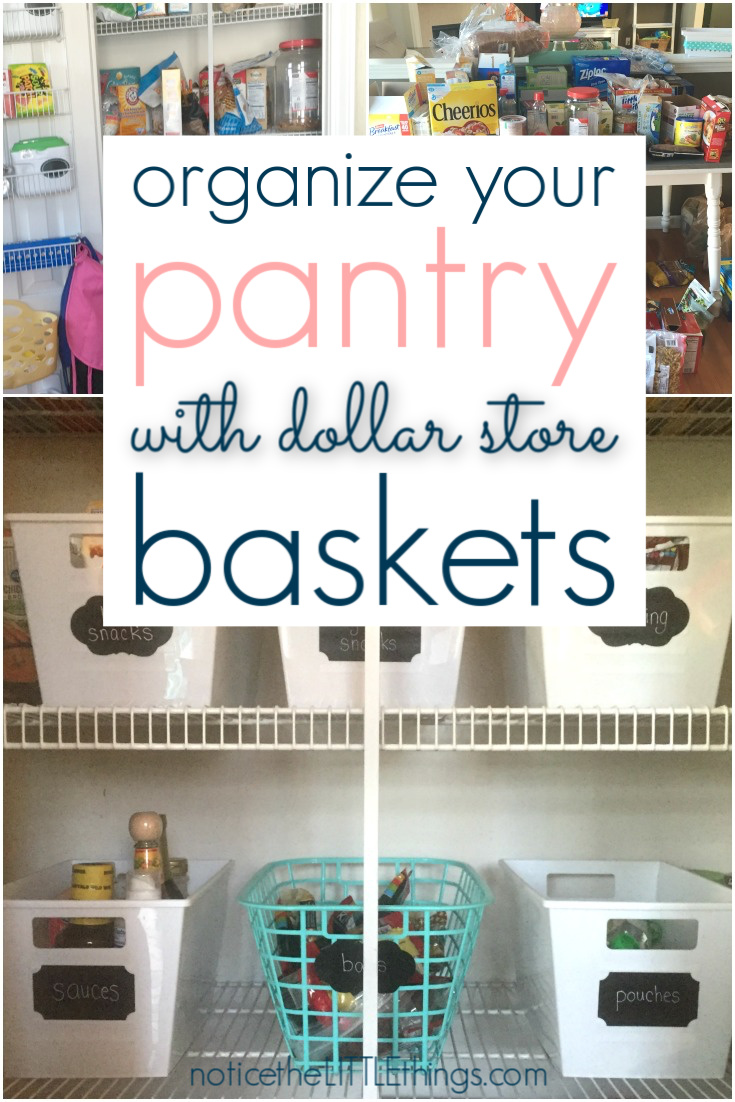 organized pantry dollar store
